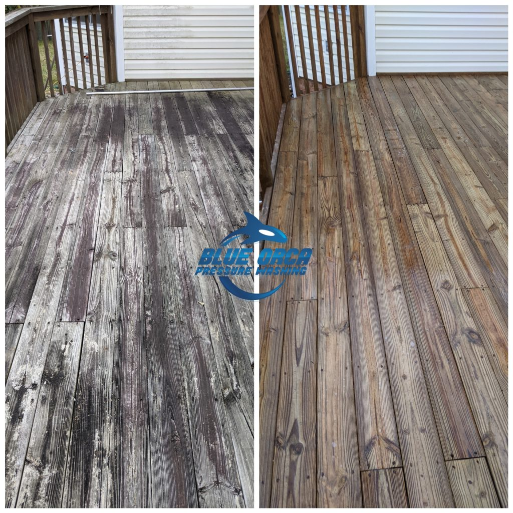 Fence and Deck Pressure Washing
